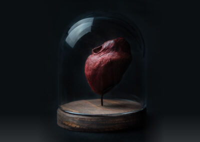 Heart in Glass Dome-1
