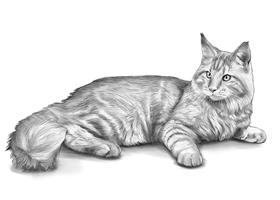 CAT 4B