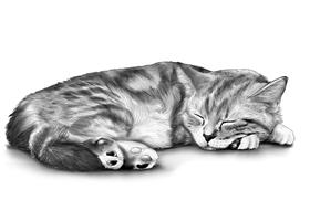 CAT 9B
