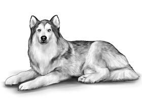 DOG 3A