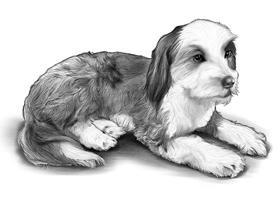 DOG 8A