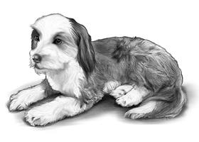 DOG 8B