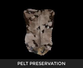 Pelt Preservation