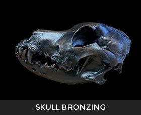 Skull Bronzing