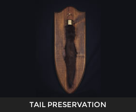 Tail Preservation